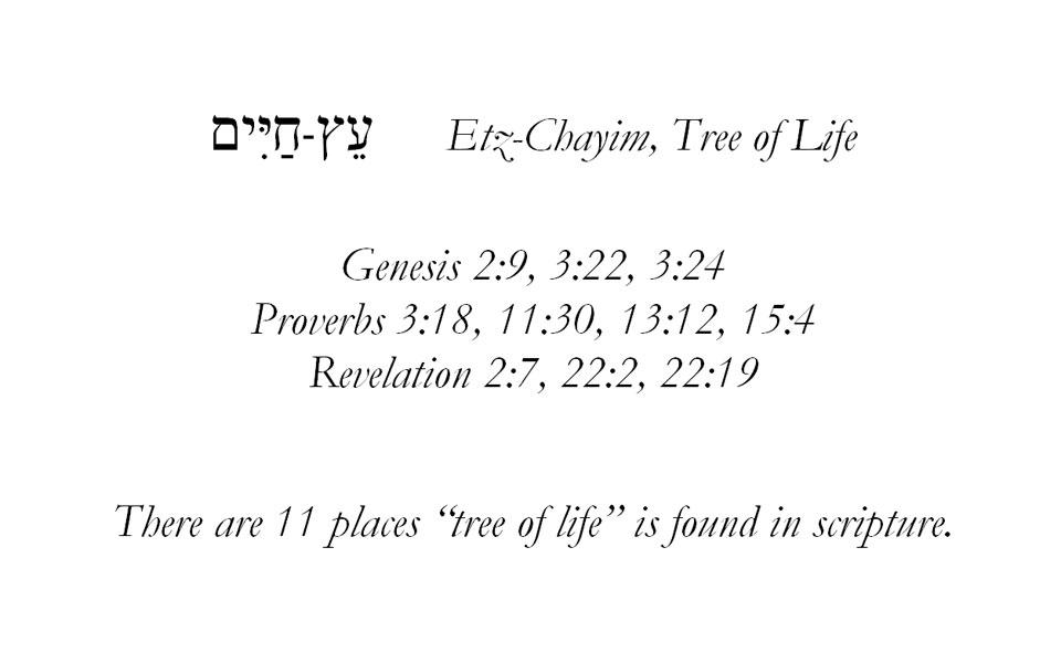 Etz-Chayim-scripture